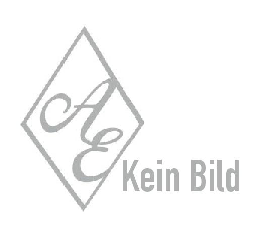 Offenes Schnappriegelschloss mit Schlüssel